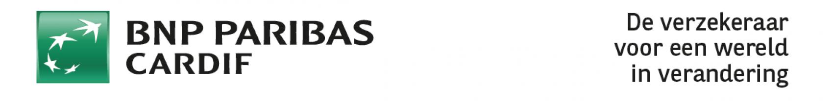 adv03 - advertentie opmaak met losse onderdelen - header met logo